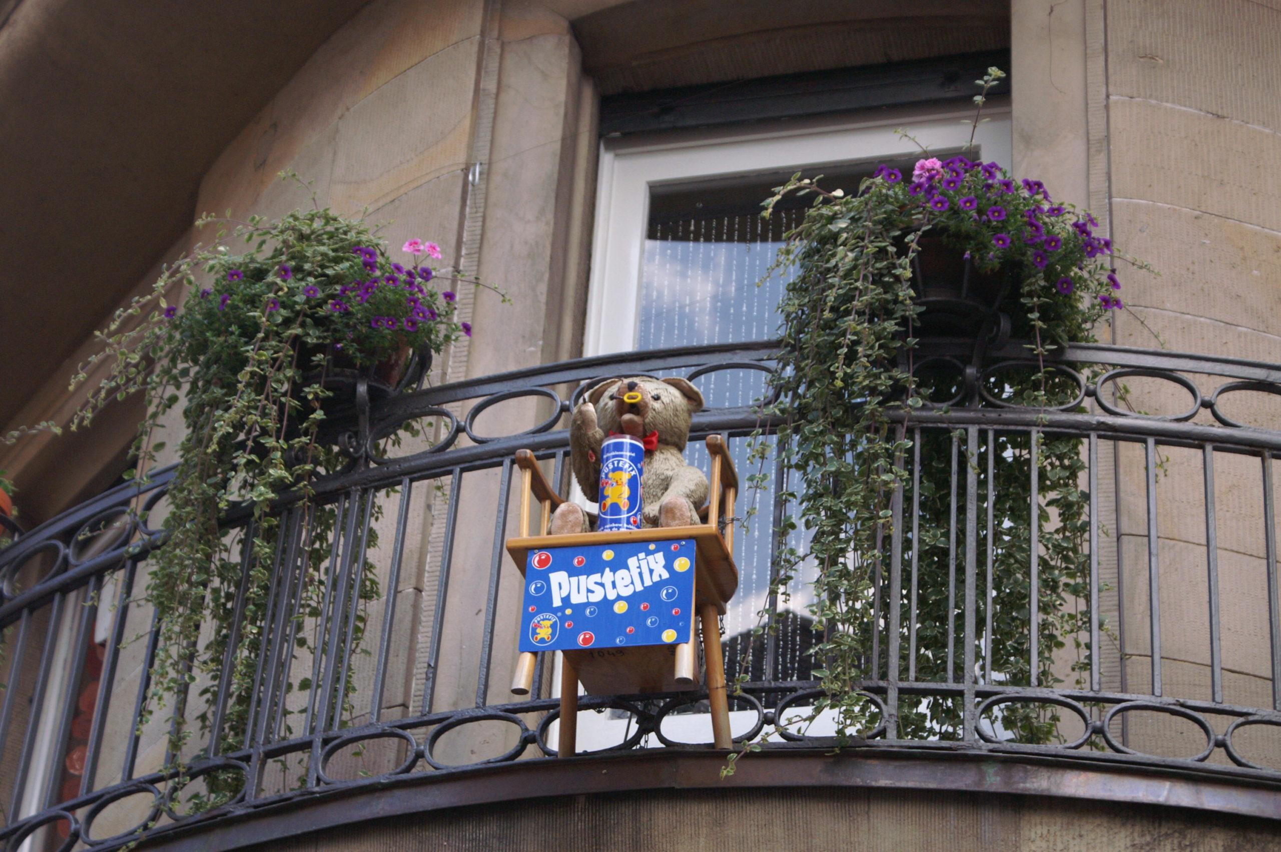 Teddy bear in Heidelberg