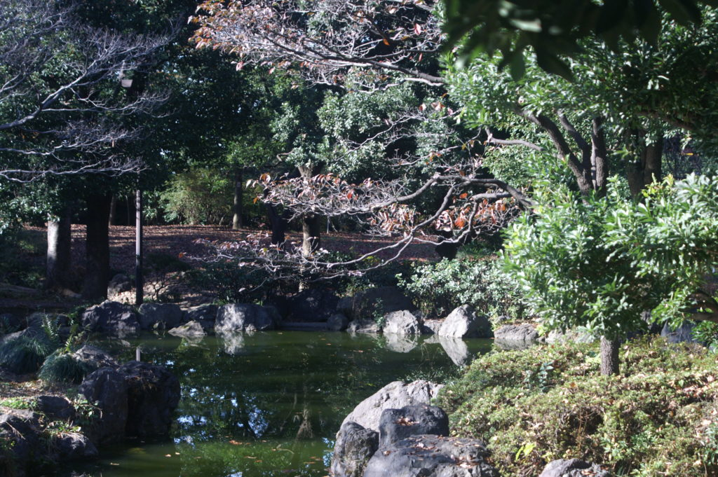Heiwa no Mori (literally Peace Forest) is a park in Nakano City, Tokyo