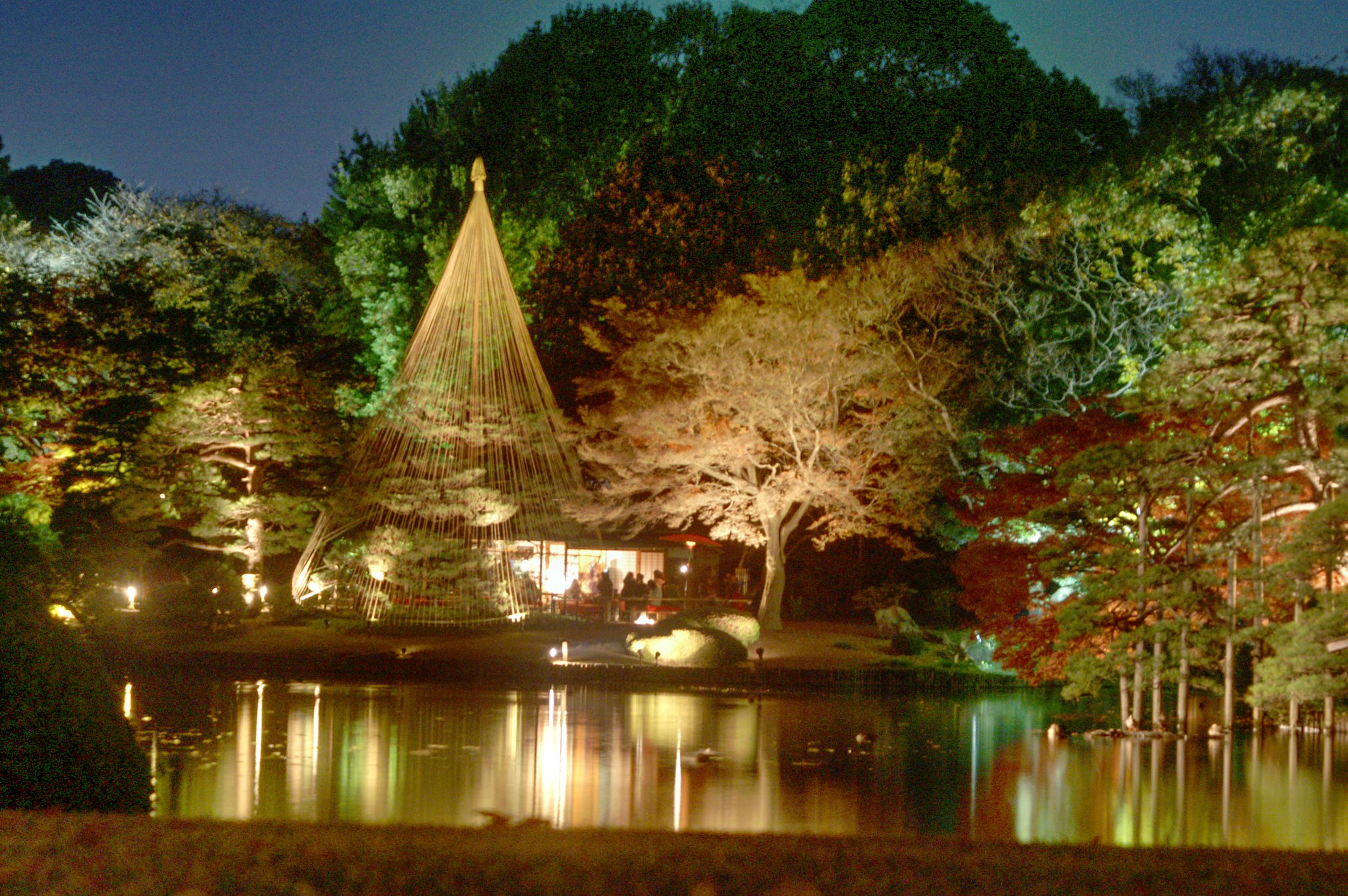 Rikugien Light-up Event