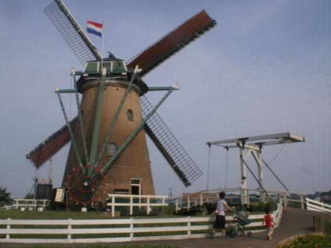 Dutch windmill in Sakura City
